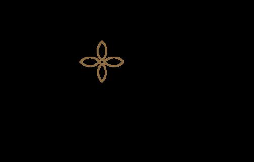 elvy - branding 2019-14
